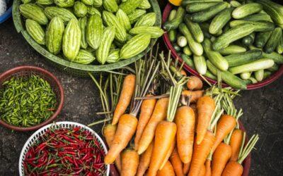 En sundere livstil: Gode råd til dig, som vil have en sundere hverdag
